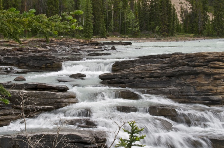 Athabasca Falls. Jasper National Park. Alberta-Canada