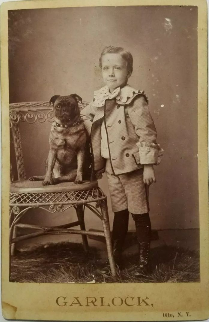 Pin By Debbie Tuttle On Pugs Dogs And Kids Pug Love Vintage Dog