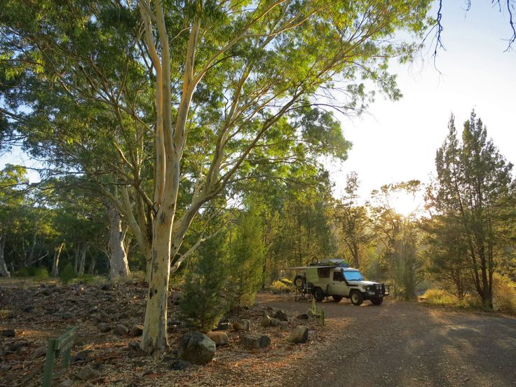 Camping : Mount Remarkable National Park | Our Naked Australia