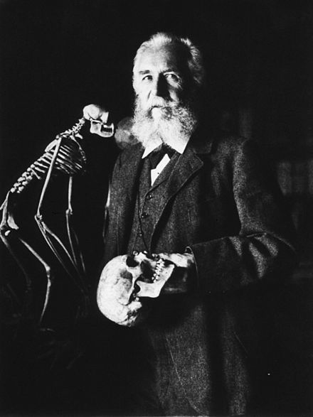 Ernst Haeckel was born February 16, 1834, and died August 9, 1919 at age 85