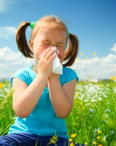 Natural Therapies for Spring Allergies