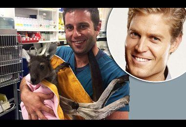 Five finalists announced to replace Dr Chris Brown on Bondi Vet