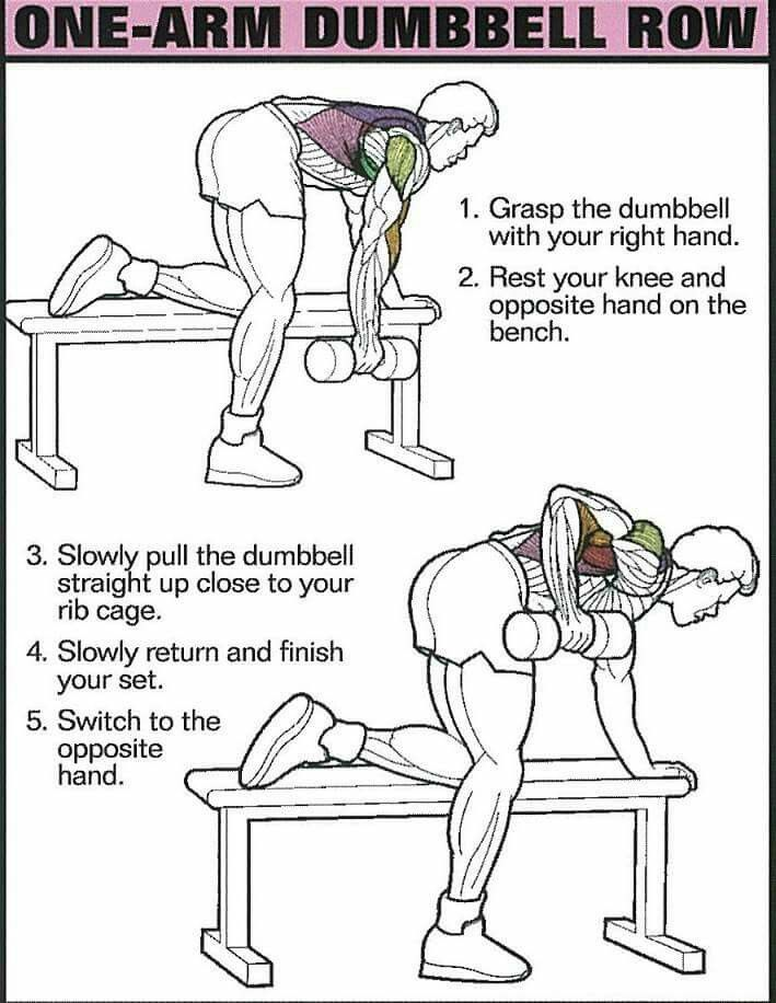 75 best Back Workout images on Pinterest | Exercise