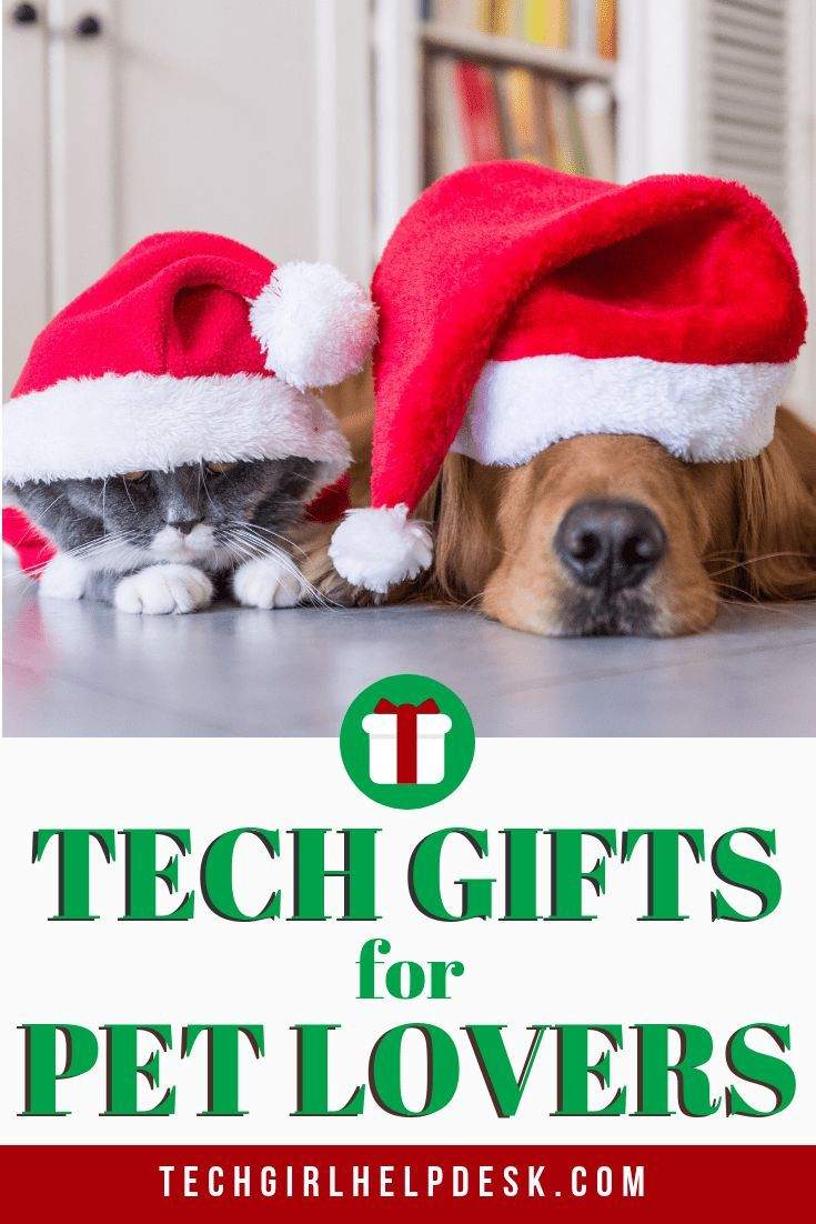 Looking for the perfect Christmas gift for the pet lover in your life? These tech gifts for pet lovers are fun and useful. #pets #gifts #technology Tech ...  sc 1 st  Pinterest & Tech Gifts for Pet Lovers | Pet Gifts | Christmas gifts for pets ...