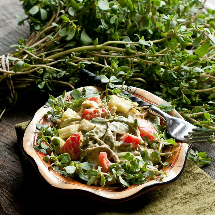 246 best raw foods entrees images on pinterest raw recipes 246 best raw foods entrees images on pinterest raw recipes health foods and healthy meals forumfinder Choice Image
