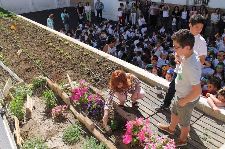 El ecohuerto del colegio Virgen de Guadalupe de Úbeda ve la luz tras dos años de trabajo