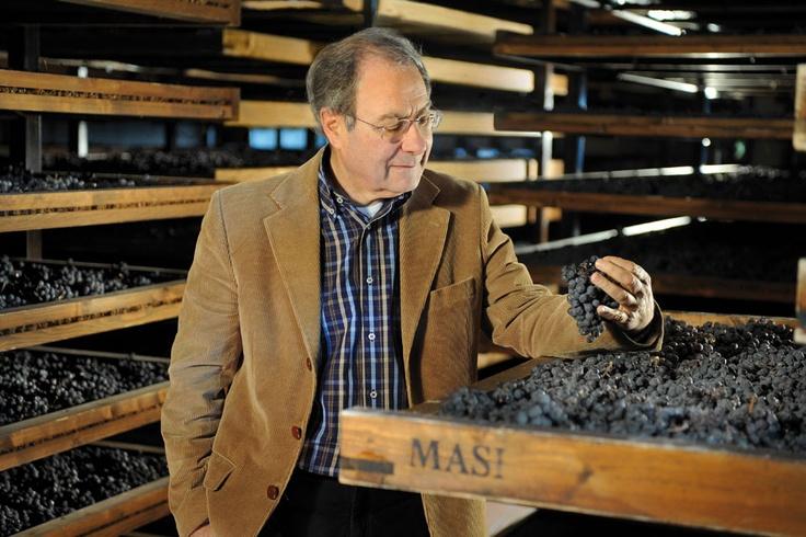 TASTE THE WINE. L'Amarone Veneto ai Salotti del Gusto dell'Alta Badia. Grazie a MASI WINE EXPERIENCE