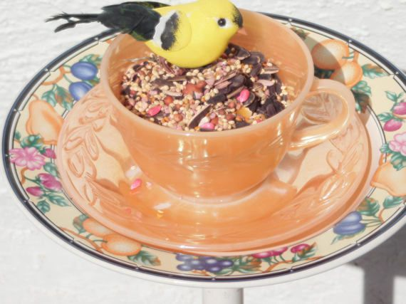 Hey, I found this really awesome Etsy listing at https://www.etsy.com/listing/512823188/re-cycled-orange-tea-cup-bird-feeder