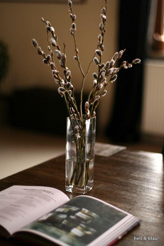 Weidenkätzchen sind etwas ganz besonderes und läuten bei uns den Frühling ein.