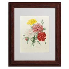 """""""Carnations from Choix"""" by Joseph Redoute Framed Painting Print"""