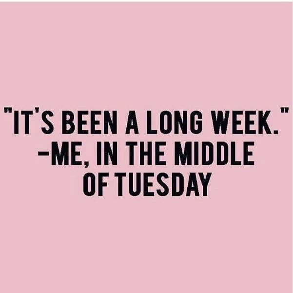 Pinterest: @dudeitsclairee. Funny QuotesFunny Wednesday QuotesTuesday HumorLyric  QuotesFunniest QuotesFriday EcardsFriday JokesFriday FunTomorrow Monday
