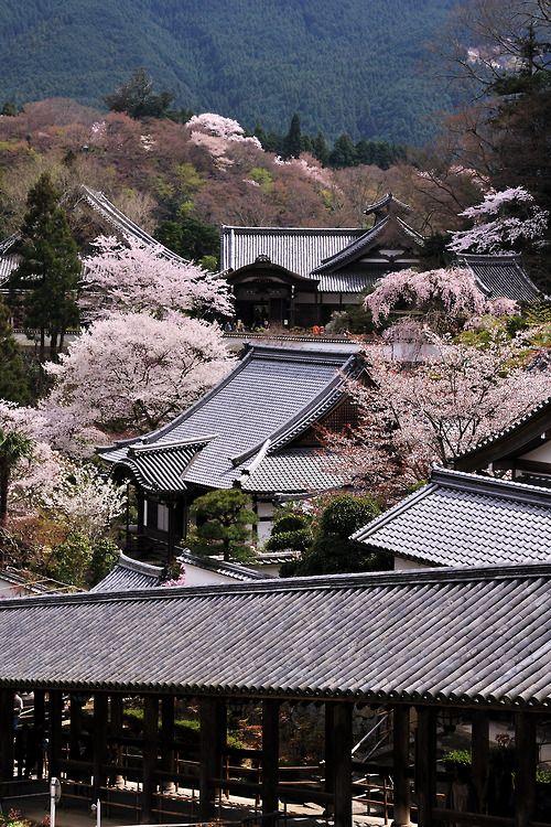 長谷寺 Hase-dera  Nara,Japan  by しかさん
