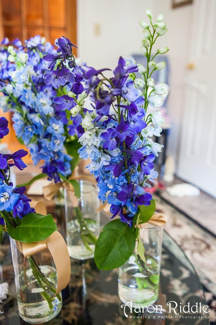25 b sta delphinium bouquet id erna p pinterest for Flower arrangements with delphinium