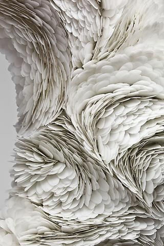 Textures in Ivory.