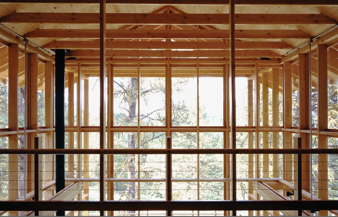 Pine forest cabin cutler anderson architects structure for Anderson architects