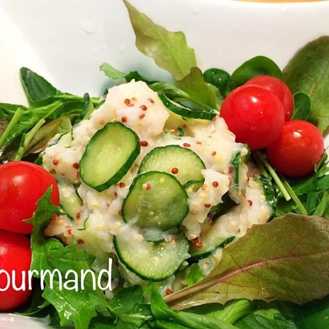 長芋の程よいねっとり感が美味し〜♡ - 82件のもぐもぐ - 長芋マッシュのマスタードサラダ♪ by gourmand