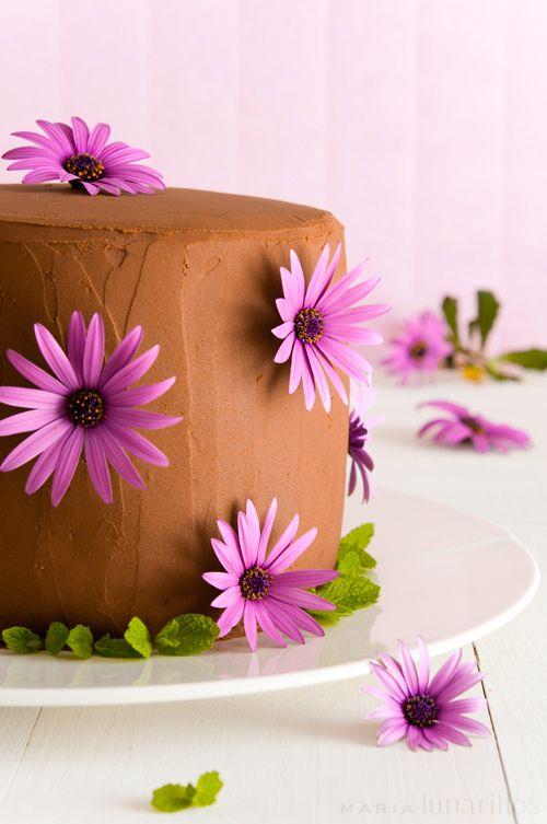 Tarta 'layer cake' de chocolate y fresas
