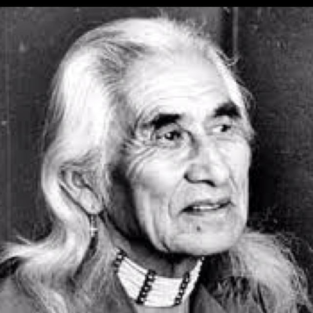 chief dan george essay help