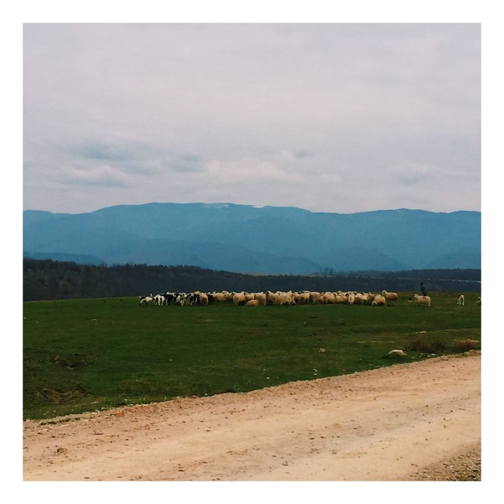 countryside life