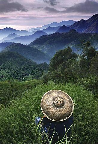 Rice farmer overlooking the mountains, Sagada, Cordilleras Mountains, Mountain Province, Insel Luzon. Philippines, Asia