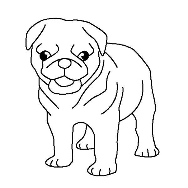 Pug Pug Puppy Coloring Page