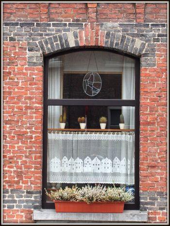 窓の一部を隠すように、窓の下半分を覆う丈の短いカーテンのことを「カフェカーテン」といいます。