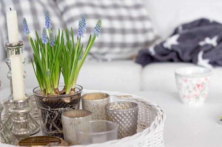 Tipps für ein gemütliches Zuhause