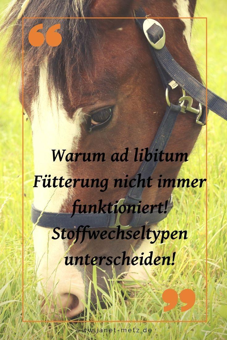 Stoffwechseltypen unterscheiden!  Pferdepflege, Pferde, Stoffwechsel