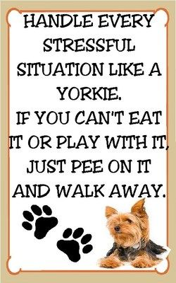 Yorkshire Terrier Magnet for The Refridgerator Stressful Situations Yorkie | eBay