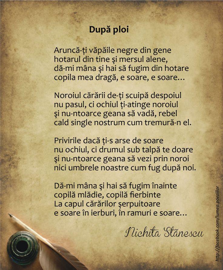 Dupa ploi - Nichita Stanescu, poezii romanesti