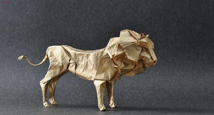 Lion by Seth Friedman