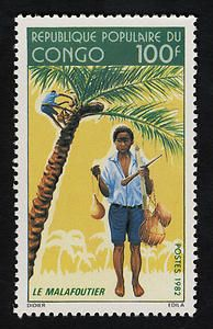 100fr Boy Gathering Coconuts single. Congo, 1982