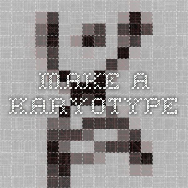 how to make a karyotype in a lab