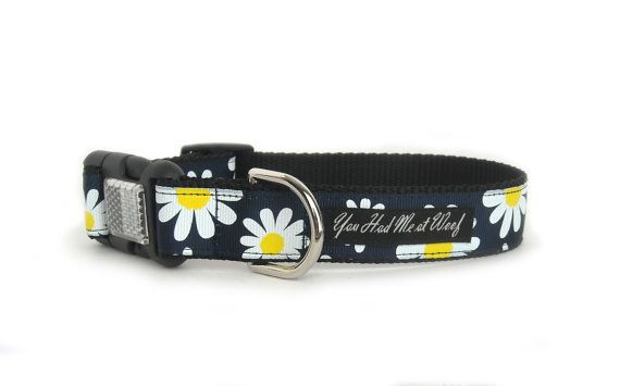 Floral Dog Collar, Daisy Dog Collar, Navy Blue, Girl Dog Collar, 1 Inch - Daisy on Etsy, $19.00