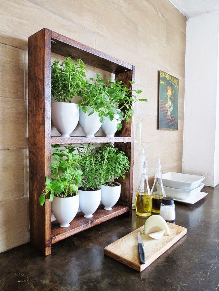 Mini Jardin Intérieur Cuisine Herbes Aromatiques Jardinière à Faire Soi  Même En Bois Et Bouteilles Recyclées