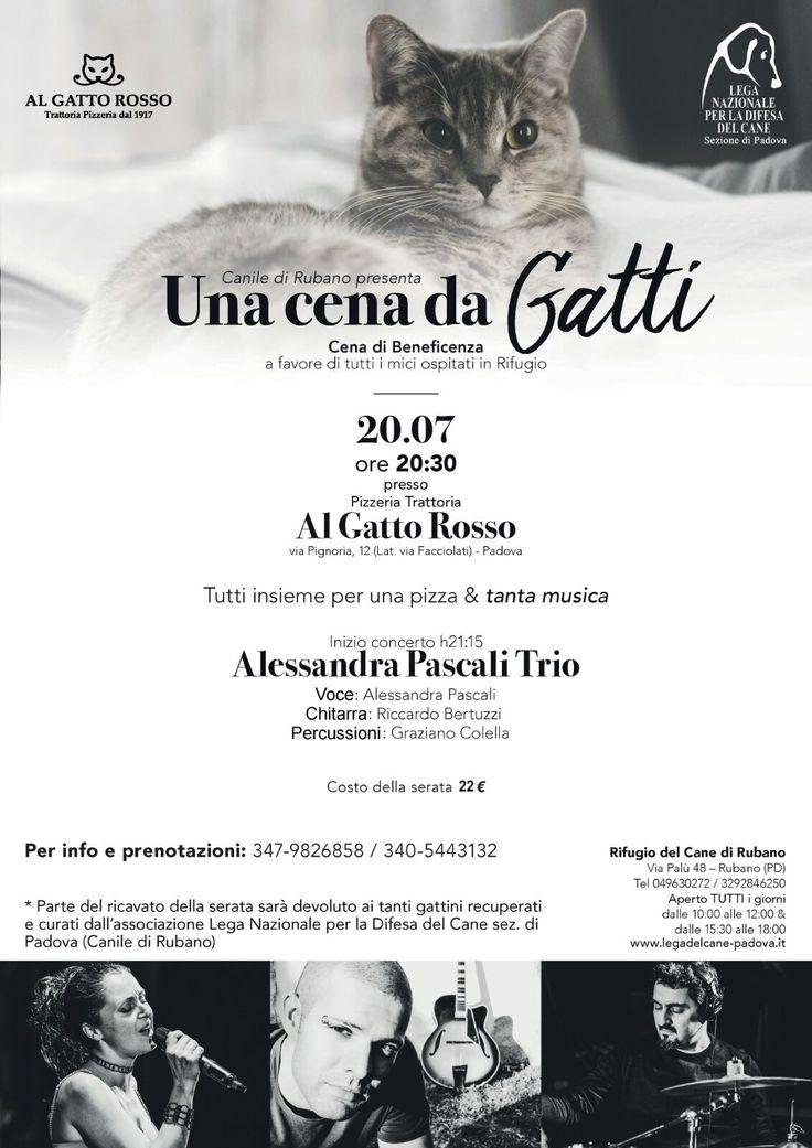 20/7 Una Cena da Gatti - #Cena #benefit a favore della #LegadelCane di #Padova - #canile di #Rubano