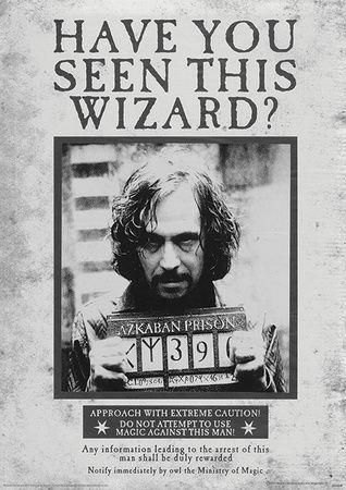 Harry Potter (Sirius Wanted) Movie Poster Masterprint