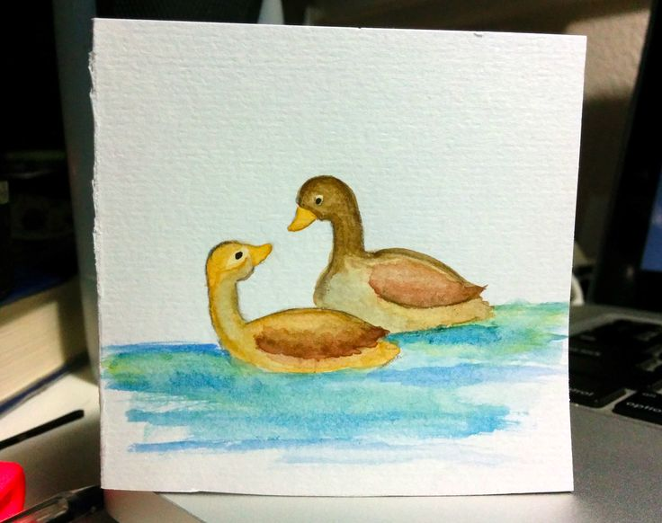 quick watercolour ducks painting