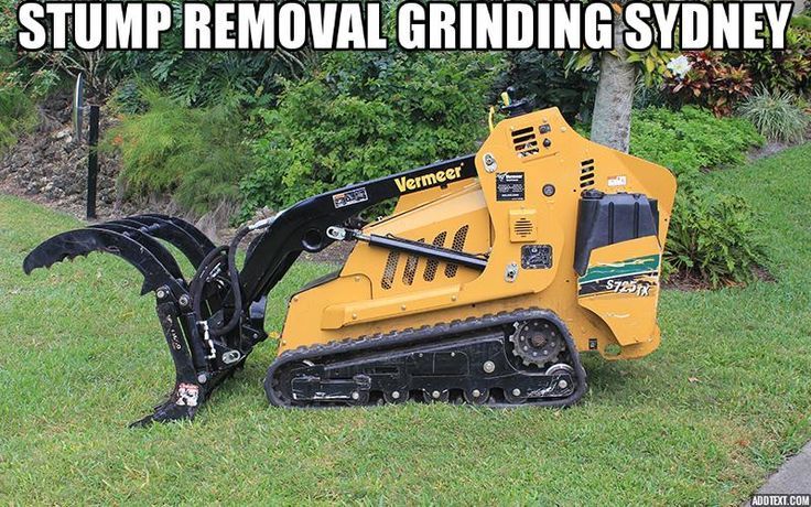 Tree Stump Removal & Stump Grinding in Parramatta, Penrith