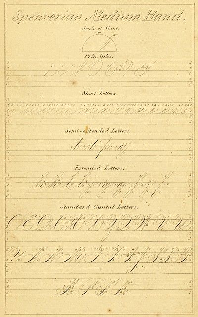 Style Spencerian Penmanship Lessons: 342 Best Images About Calligraphy......Spencerian