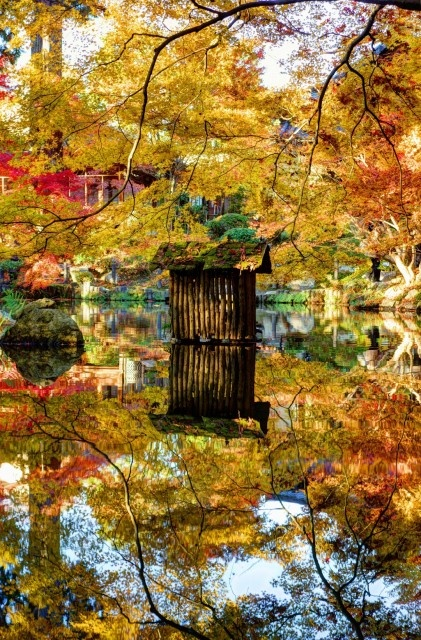 kyoto 南禅寺 天授庵