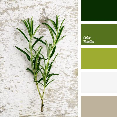 Clash of natural green shades is accentuated by white and light lilac, while the black color gains a green tint and continues the green spectrum. This solution will serve for decoration of the working study and library or an open veranda of a country house.