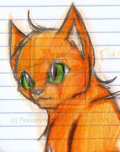 71 best images about FIRESTAR IS AWESOME on Pinterest ... Warrior Cat Drawings Firestar