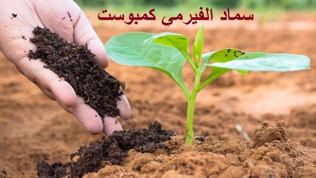 ري وسقاية النباتات المنزلية المختلفة Watering Plants كيف يمكن تقدير الوقت والكم المناسب من الماء In 2021 Garden Soil What Is Humus Humus