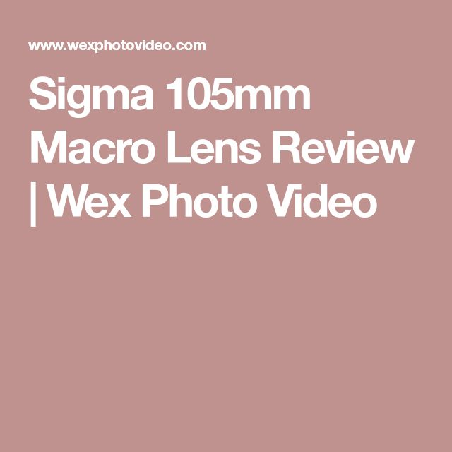 Sigma 105mm Macro Lens Review | Wex Photo Video