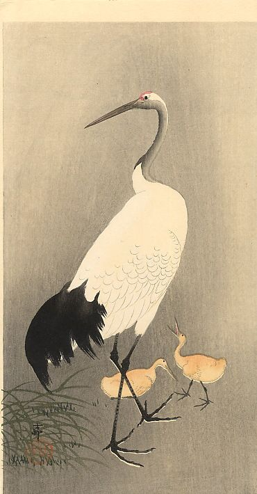 Red crowned Crane - Ohara Koson - WikiArt.org : Style: Shin hanga, Genre: Wildlife painting, Technique: Woodblock print, Material: Paper, Tags: Birds, cranes