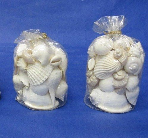 wholesale - clear gift bags of white shells