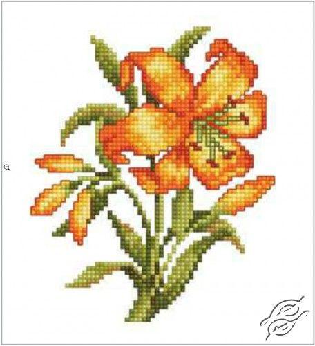 CROSS STITCH KITS - RTO - Cross Stitch Kits - Flowers - Yellow Lily - Gvello Stitch