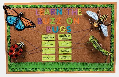 Bugs & Butterflies Bulletin Board