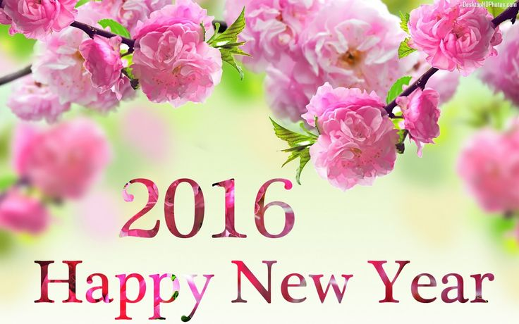 JeffCo Gardener: Happy New Year!